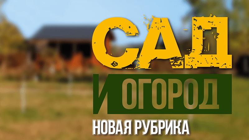 новая рубрика homework taras тарас кириченко